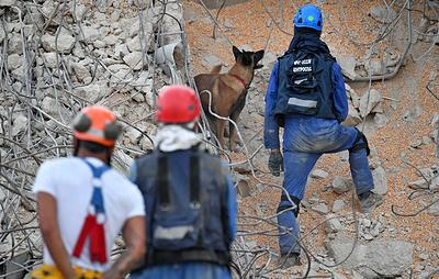Спустя трое суток после взрыва в Бейруте под завалами находят живых людей и ищут погибших