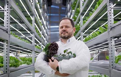 """""""Веселая ферма"""" в реальности: как накормить все человечество здоровой едой"""