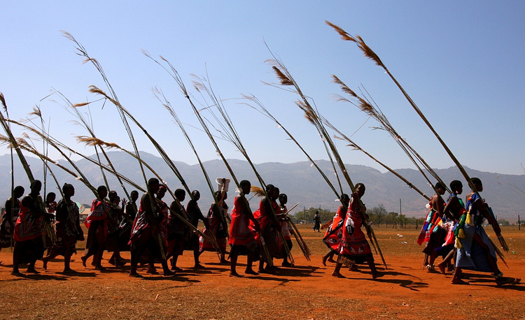 The reed dance in Swaziland is held annually in late August - early September. At the end of the dance the king chooses a wife among the dancers
