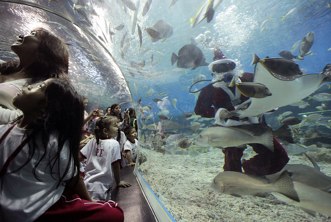 Europe's largest oceanarium will open in Moscow in 2015. The new 40,000 square meter oceanarium will be located at the VDNKh exhibition center. Photo: Manila Oceanpark, Philippines