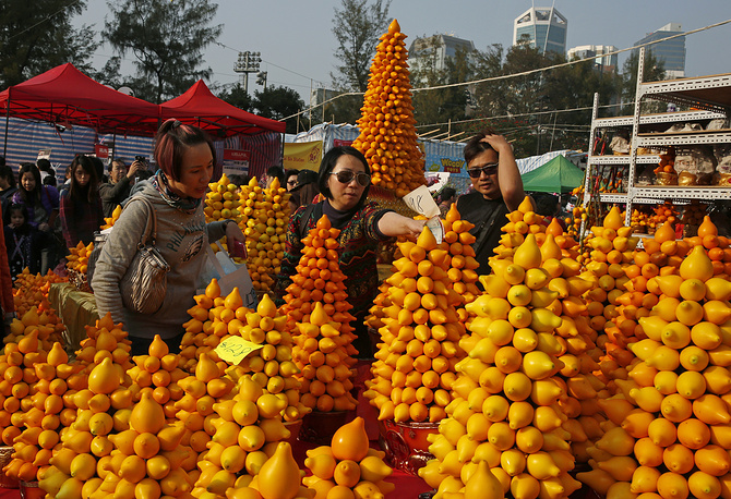 Customers buy Solanum mammosum, also known as nipplefruit, for home decoration at a Lunar New Year market in Victoria Park of Hong Kong