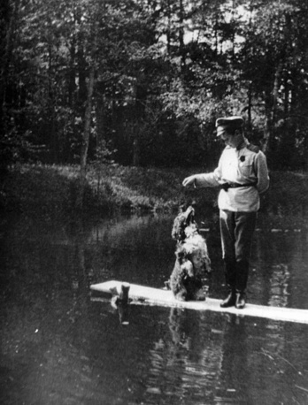 Tsarevich Alexei Romanov with his spaniel Joy, 1915