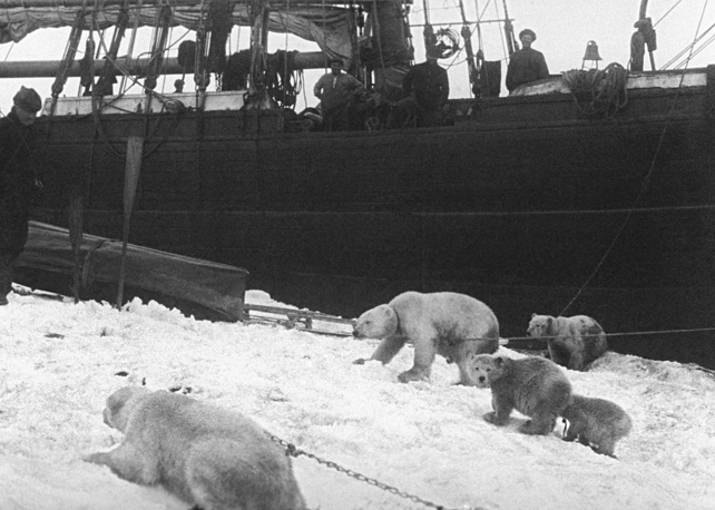 Novaya Zemlya. Georgy Sedov's Saint Martyr Foka ship staying for winter during their expedition to North Pole, 1913