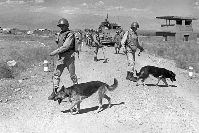 Soviet sappers of military engineering unit, assisted by specially trained dogs, inspecting the road in Afghanistan, 1988