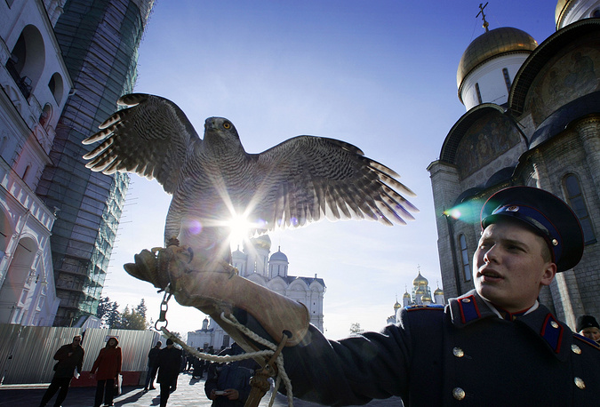 Kremlin guard holding a falcon during a ceremony of the Changing of the Guard, with Archangel Michael Cathedral in the background, in the Kremlin in Moscow. Falcons guard the Kremlin area protecting old historic monuments from various birds
