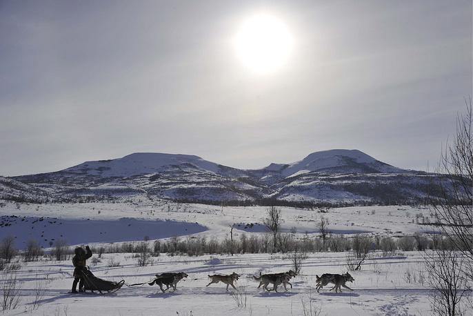 Kamchatka's traditional dog sled race Beringiya