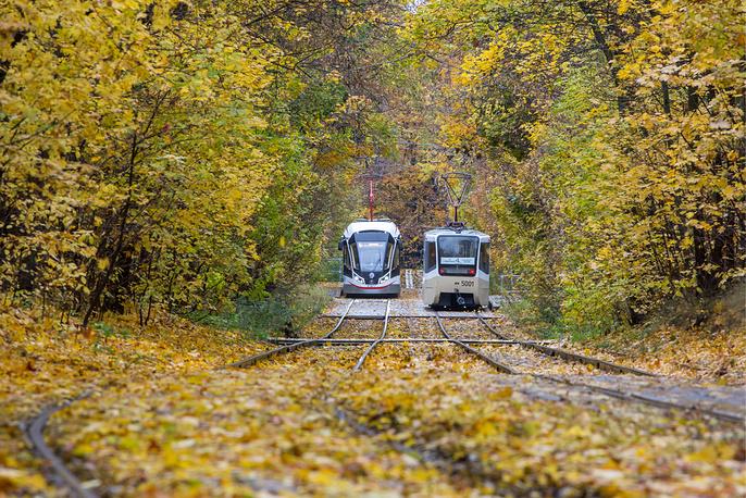 Tram going through the yellow autumn park in Sokolniki district