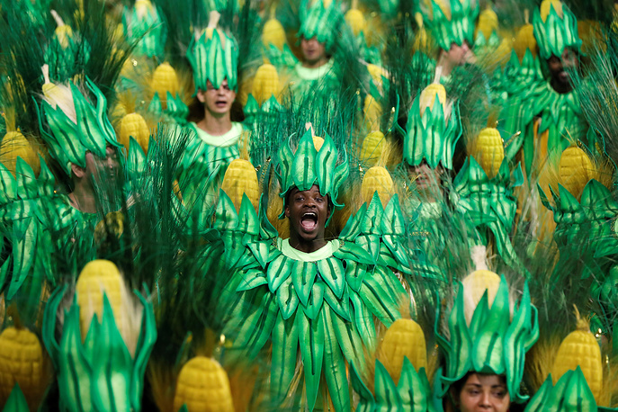 Members of the samba school Grupo Especial Dragoes da Real take part in the carnival celebration at the Anhembi sambodrome in Sao Paulo, Brazil, February 11