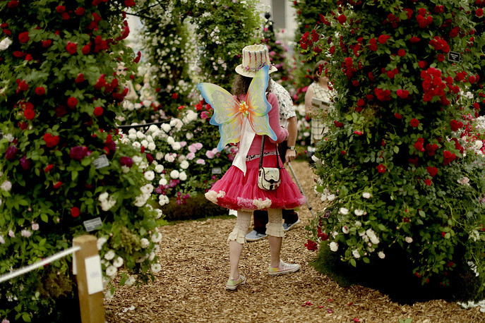 The organizers consider the Chelsea Flower Show the world's most prestigious flower show and celebration of horticultural excellence and innovation