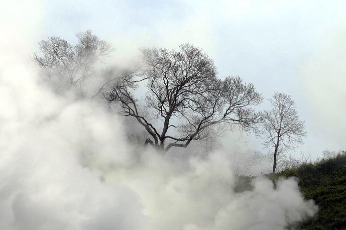 В 2013 году число действующих гейзеров увеличилось в результате самовосстановления