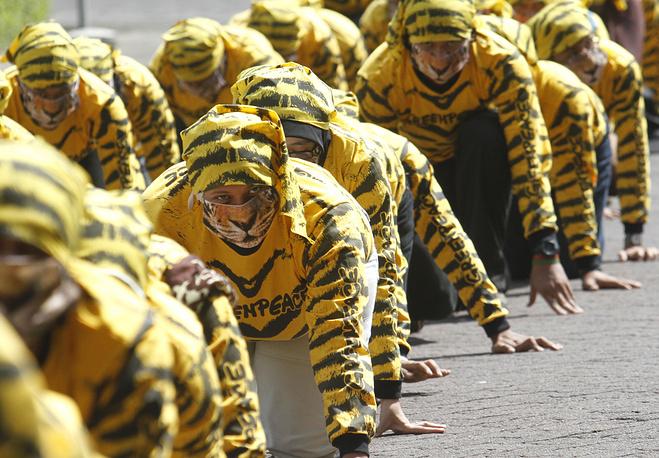 В XX веке тигр занесен в Красную книгу Международного союза охраны природы, а также в Красную книгу России. В мире проводятся многочисленные акции в защиту тигров