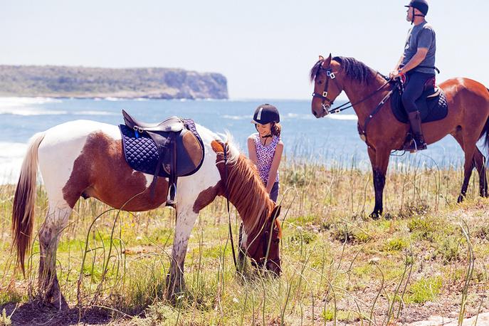 Лошади, традиционный элемент меноркской истории и культуры