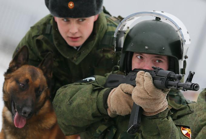 В ходе тренировок собак приучают не бояться выстрелов и взрывов