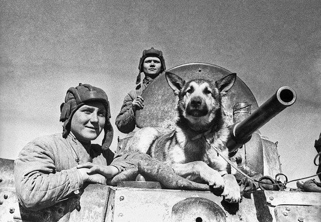 Друзья-разведчики, 1942 год