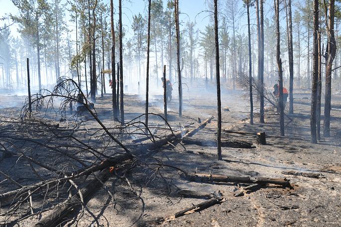 И без того непростую пожароопасную ситуацию осложняет погода - в регионе накануне объявлено штормовое предупреждение