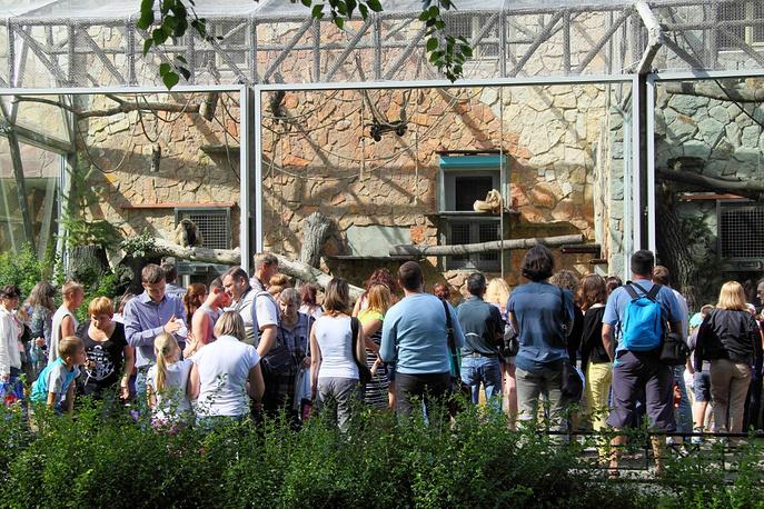 В настоящее время в Ленинградском зоопарке обитают порядка 3 тыс. животных почти 600 видов. Летом большинство экспозиций располагается в уличных вольерах, на зимний период все теплолюбивые животные переводятся в крытые отапливаемые помещения