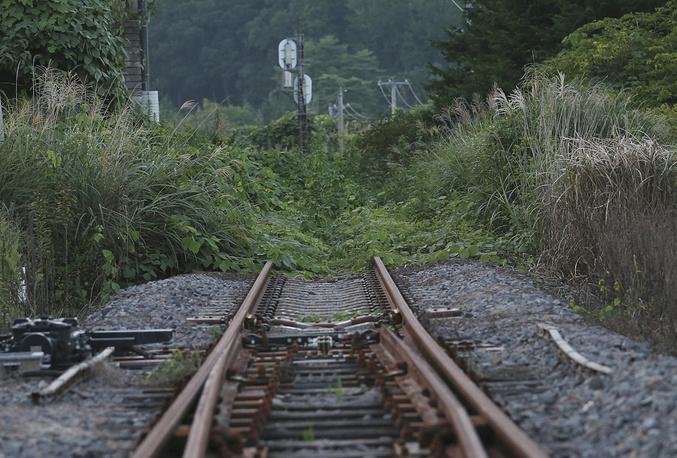 Массовому возвращению жителей препятствует отсутствие инфраструктуры. На фото: заросшая сорняками железнодорожная станция