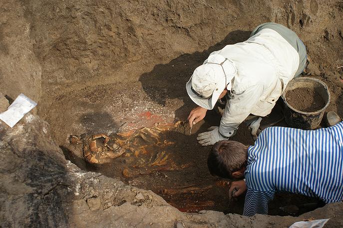 Расчистка основного (наиболее древнего) захоронения эпохи ранней бронзы