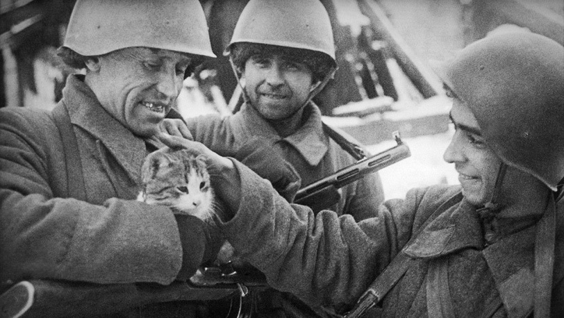 Бойцы, обороняющие Сталинград, с кошкой
