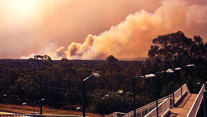 Фото AP Photo/New South Wales Rural Fire Service