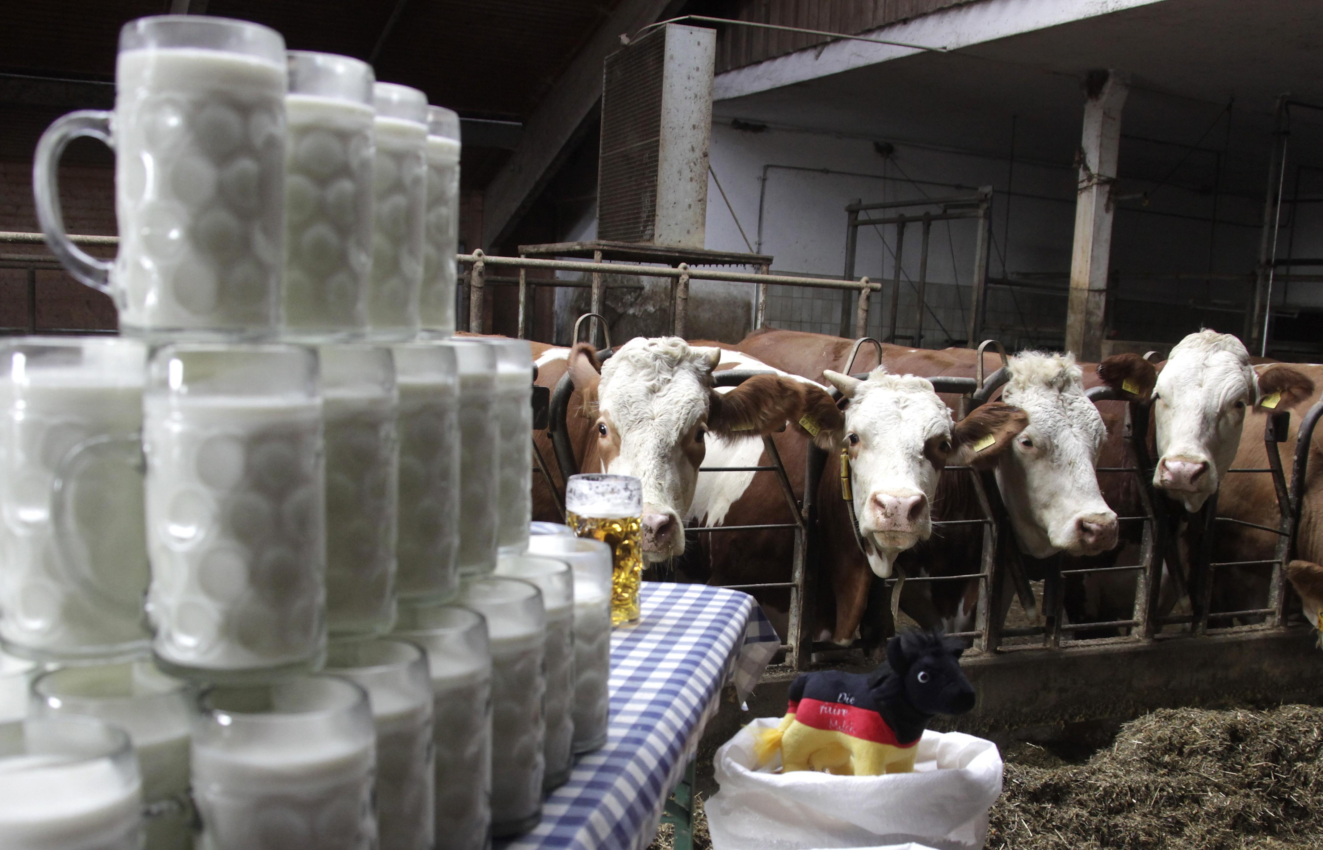 Много ли вы знаете о молочных продуктах