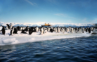 Antarctica (archive)