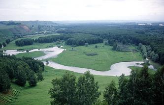 Окрестности села Сростки в Алтайском крае