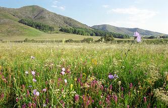 Государственный природный Оренбургский заповедник