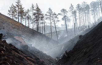 Архив. Пожар в Иволгинском лесничестве в Бурятии