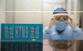 Тестирование вируса  H7N9. Фото EPA/RAY YOUNG