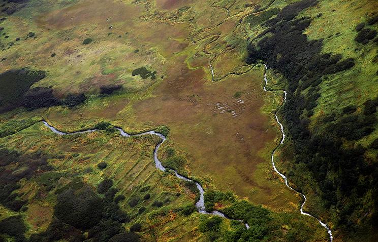 Rivers seen in one of the Kuril islands