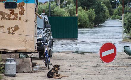 Photo ITAR-TASS/Dmitry Morgulis