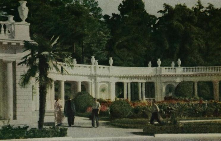 Сочи. Вход в парк Дендрарий. 1953г.