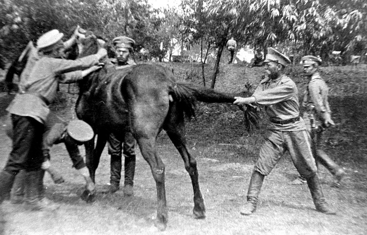Из жизни Оренбургского казачьего воеводы Нагого полка в первую мировую войну. На фото: казаки ставят коню новые подковы. 1914 год