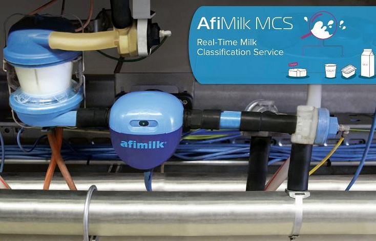 AfiMilk MCS: Оперативная классификация (разделение) молока на ферме выполняется на каждом доильном месте
