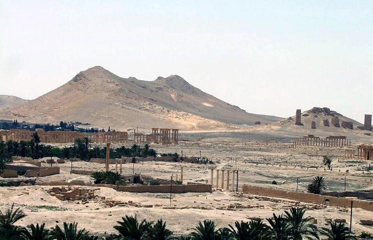 Вид на памятники в Пальмире