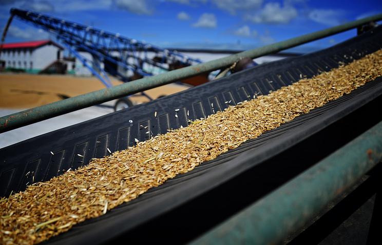 Минсельхоз США отдал Российской Федерации первое место вэкспорте пшеницы