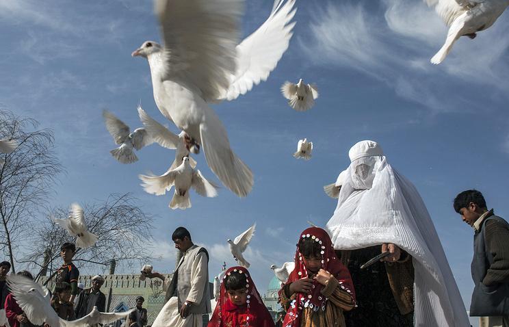 СМИ: в Австрии собираются запретить хиджаб в детских садах и начальных школах