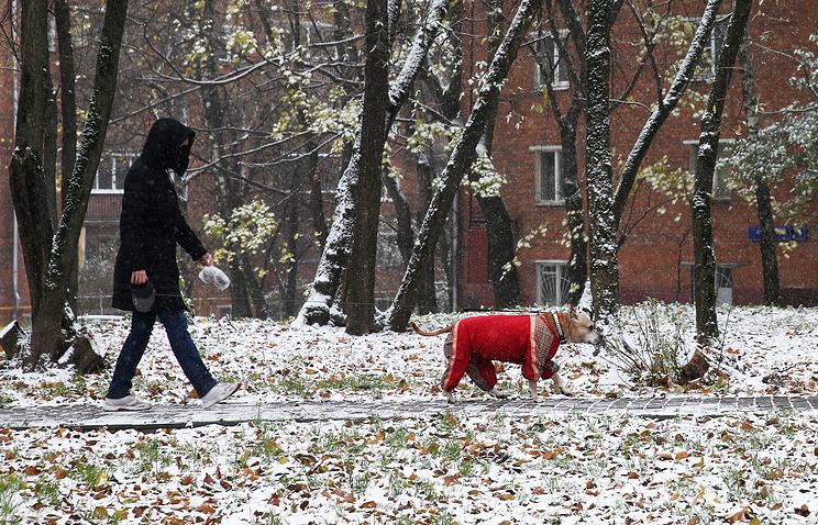 ВПрикамье предполагается похолодание доминус 12 градусов— МЧС
