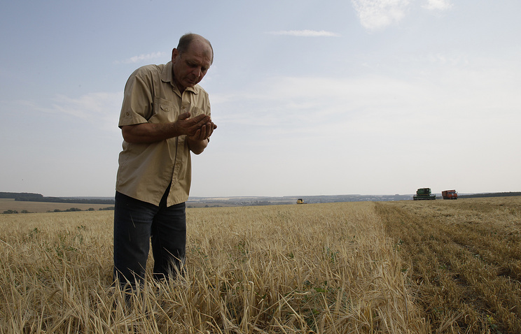 50% посевных площадей списано из-за засухи вЗабайкалье