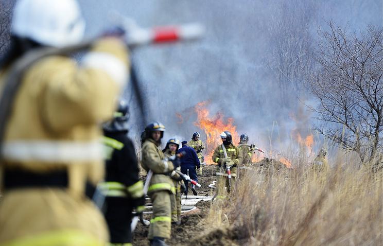 ВСвердловской области от чудовищного лесного пожара спасен поселок Кедровка