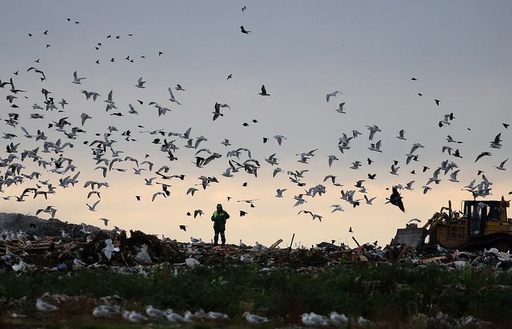 ВКемеровской области обострилась ситуация снесанкционированными свалками