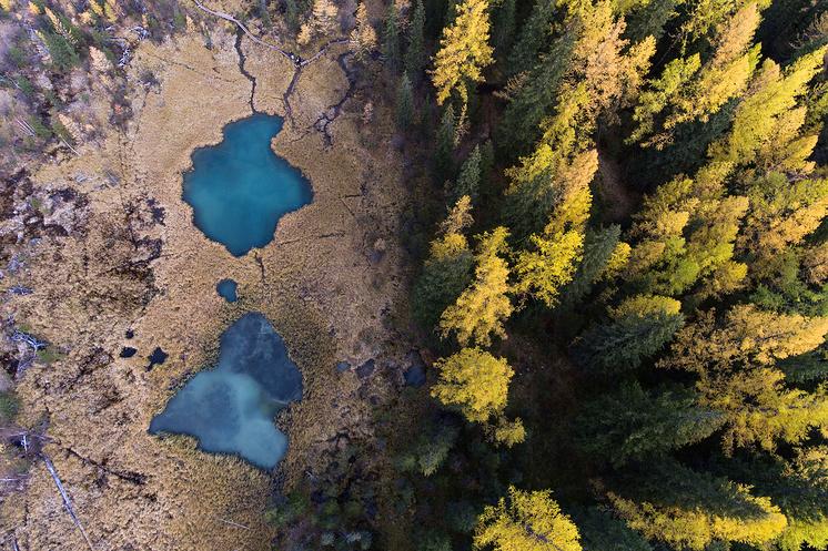 Озера недалеко от села Акташ в Улаганском районе